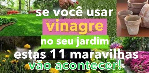 vinagre_-_jardim